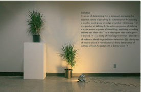 1 and 3 Plants, installation, 2008